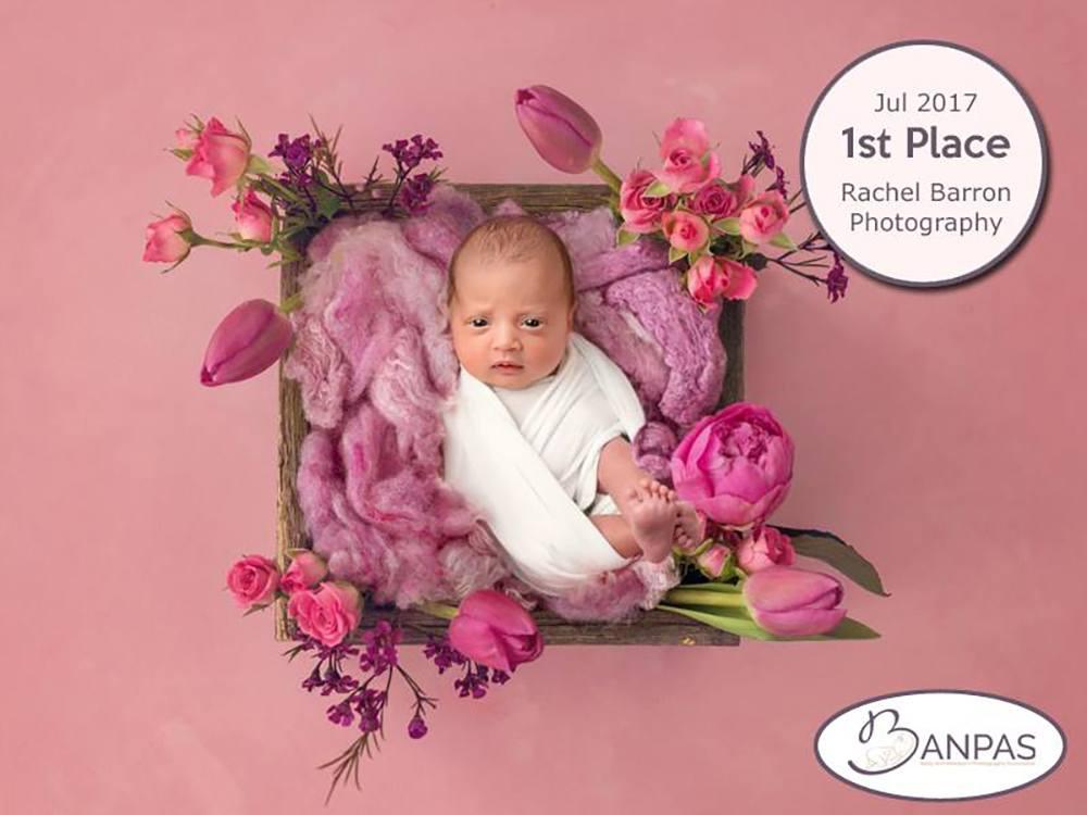 newborn photographer Scarborough